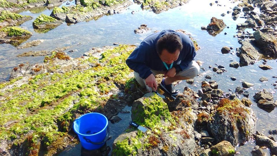 浅瀬の海岸で、しゃがみこんでサンプルを確認しているデフィン先生。