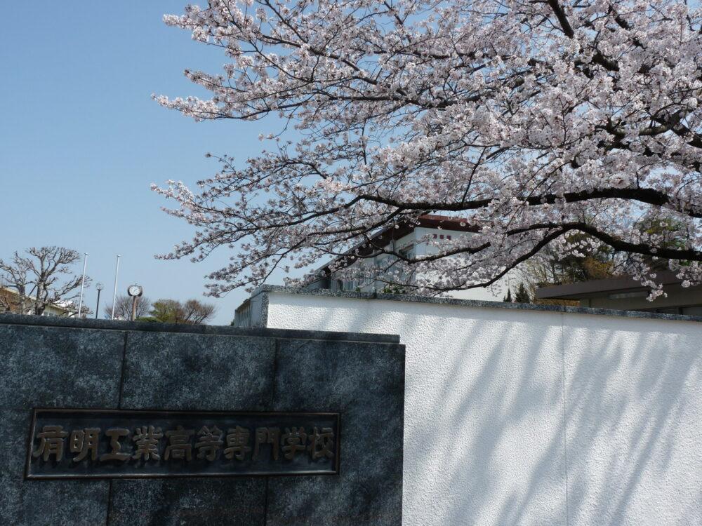 有明高専の館銘板の背景には、満開に咲く桜の木。