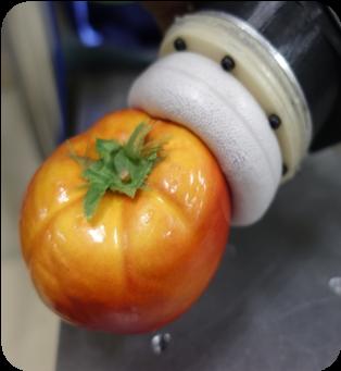 何でもつかめるロボットハンド(ロボットがトマトをつぶさず掴んでいる。)