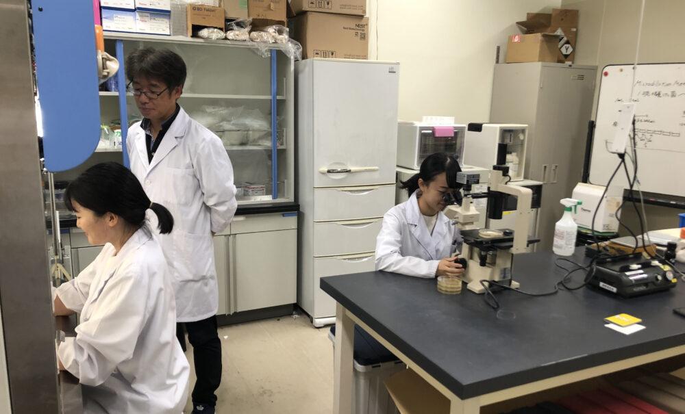 別の研究室で顕微鏡をのぞき込んだりする学生たち。見守る奥野先生